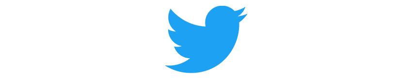 Logo Twitter réseaux sociaux